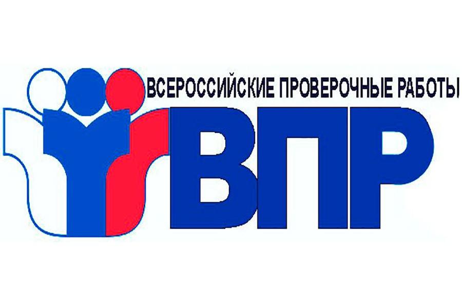 Всероссийские проверочные работы title=